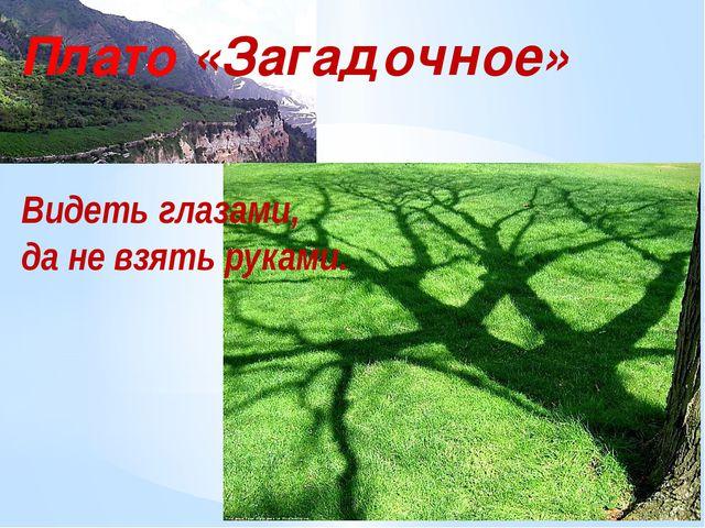 Плато «Загадочное» Видеть глазами, да не взять руками.