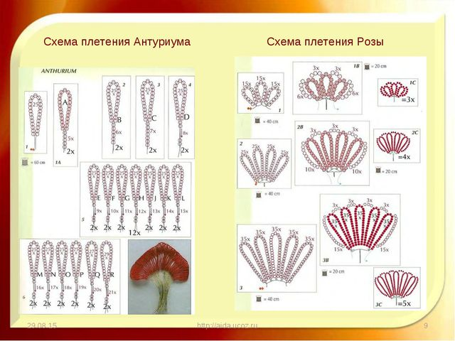 * http://aida.ucoz.ru * Схема плетения Антуриума Схема плетения Розы http://a...