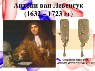 Микроскоп Левенгука, дающий увеличение до 270 раз Антони ван Левенгук (1632 –