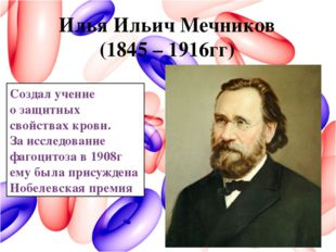 Илья Ильич Мечников (1845 – 1916гг) Создал учение о защитных свойствах крови.