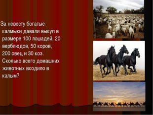 За невесту богатые калмыки давали выкуп в размере 100 лошадей, 20 верблюдов,
