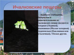 Государственный музей-заповедник А. С. Пушкина «Болдино» Наблюдая за жизнью р