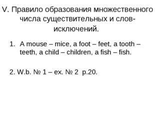 V. Правило образования множественного числа существительных и слов-исключений