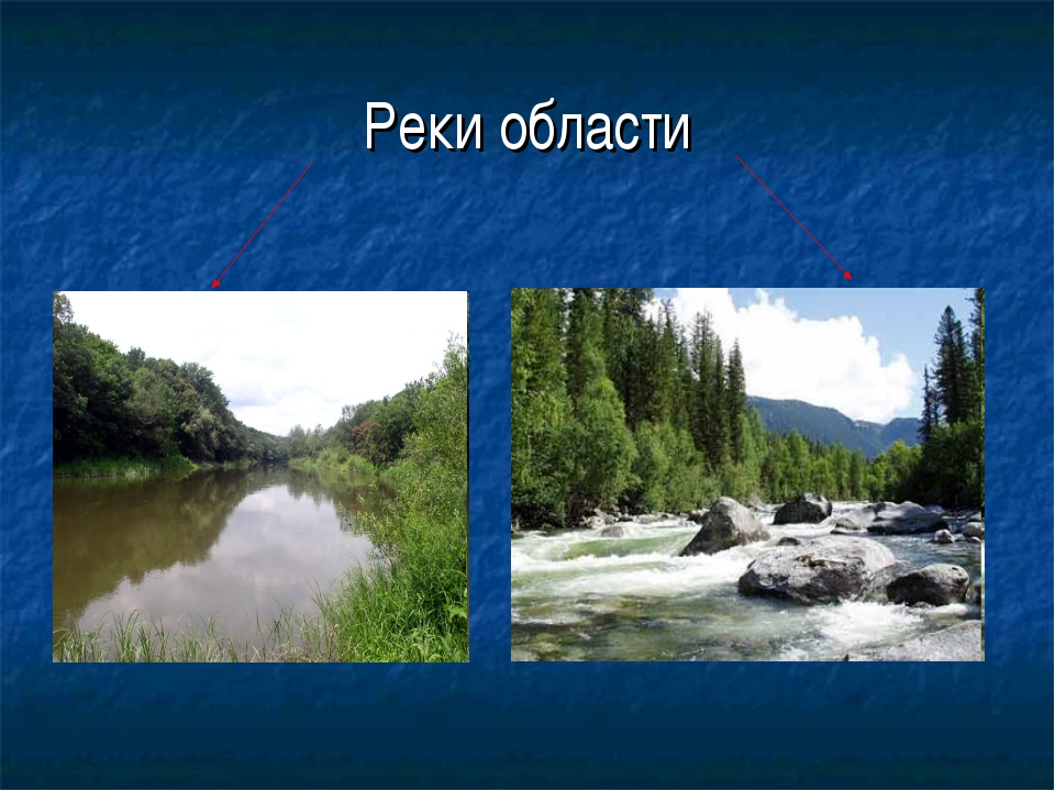 Реки области