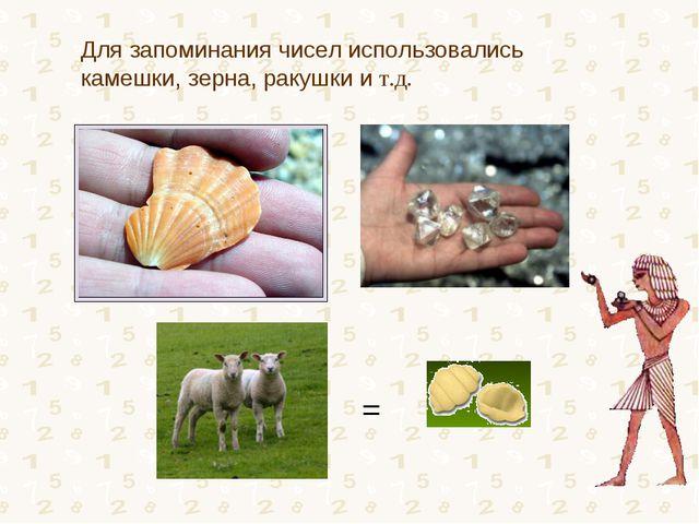 = Для запоминания чисел использовались камешки, зерна, ракушки и т.д.