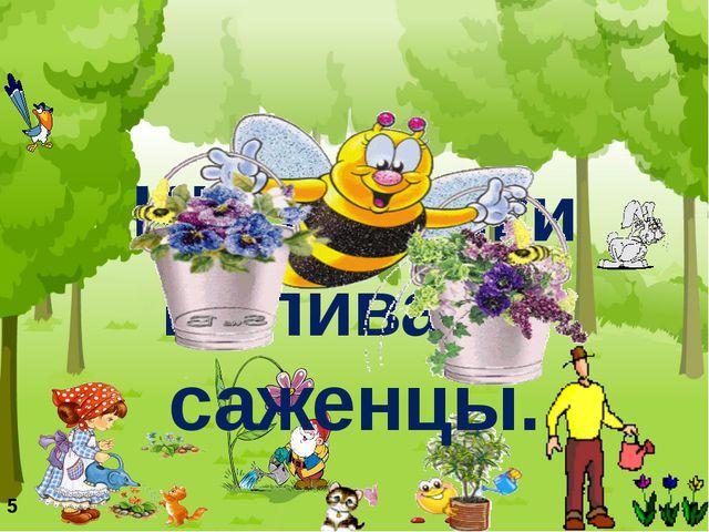 Школьники поливают саженцы. 5
