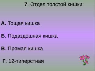7. Отдел толстой кишки: А. Тощая кишка Б. Подвздошная кишка В. Прямая кишка
