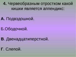 4. Червеобразным отростком какой кишки является аппендикс: А. Подвздошной. Б.