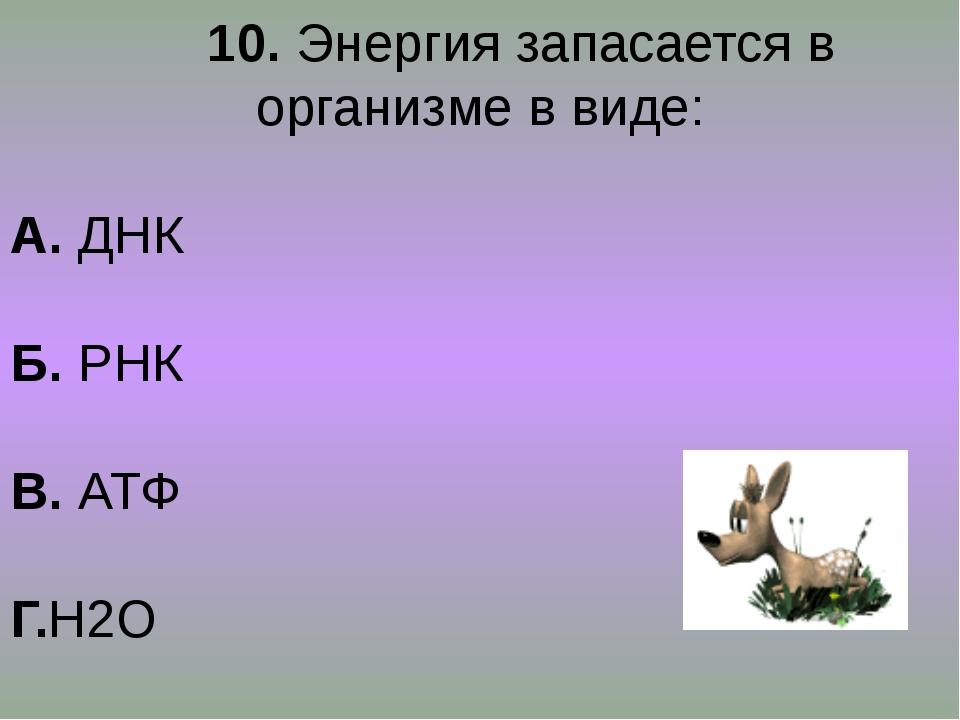 10. Энергия запасается в организме в виде: А. ДНК Б. РНК В. АТФ Г.Н2О