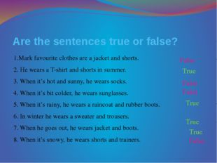 Are the sentences true or false? 1.Mark favourite clothes are a jacket and sh