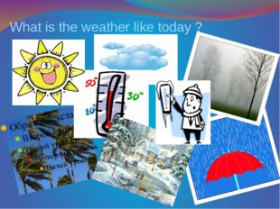 What is the weather like today ?