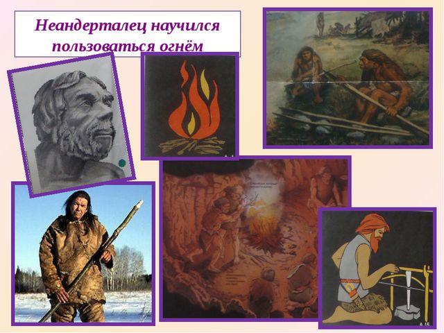 Неандерталец научился пользоваться огнём