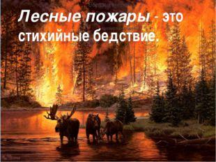 Лесные пожары - это стихийные бедствие.
