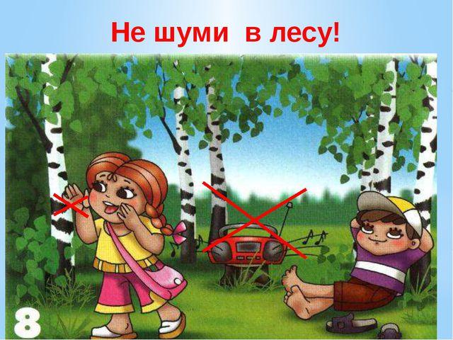 Не шуми в лесу! Не шумите в лесу. У леса музыка своя… её послушайте друзья! В...