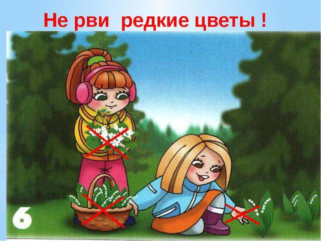 Не рви редкие цветы ! Не рвите редкие цветы. Есть цветочки редкие, белые и не...