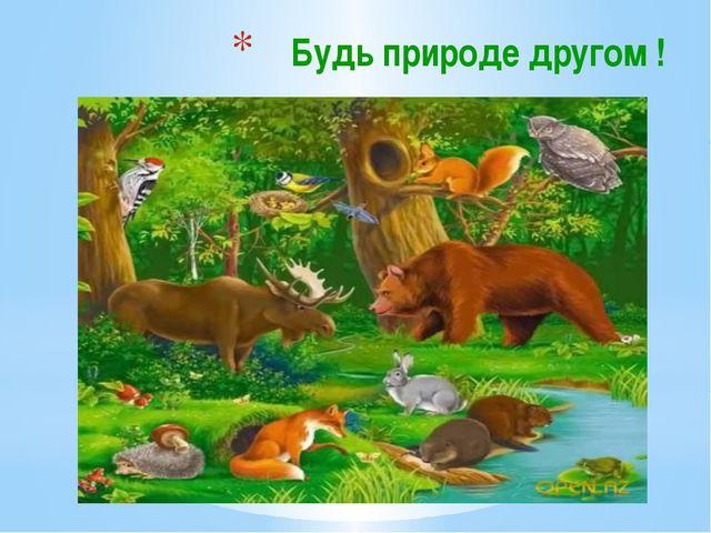Будь природе другом !