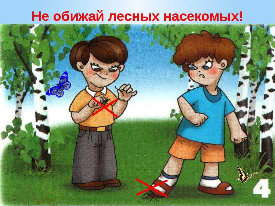 Не обижай лесных насекомых. В лесу летают мотыльки, ползут козявки и жуки… пр...