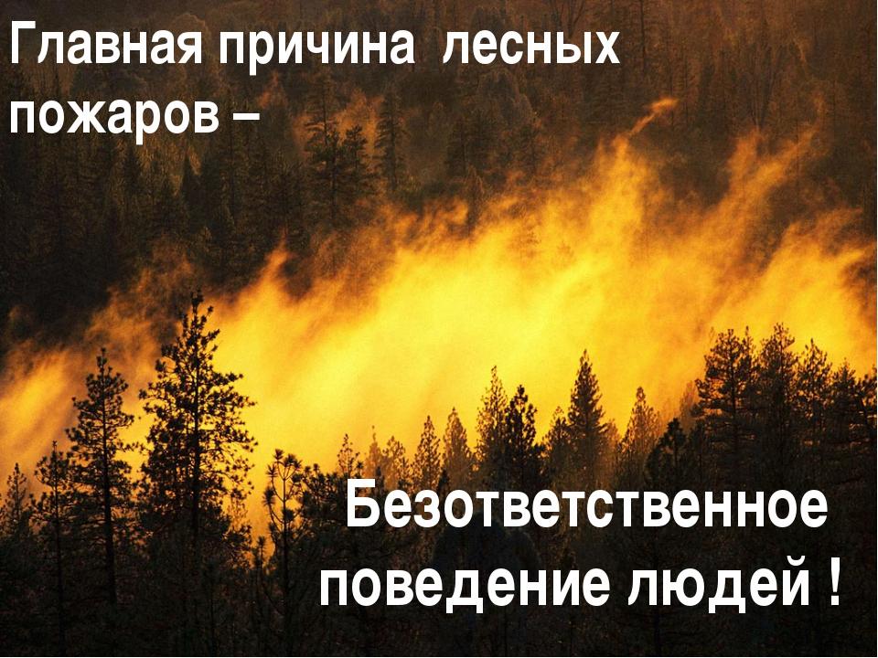 Главная причина лесных пожаров – Безответственное поведение людей !