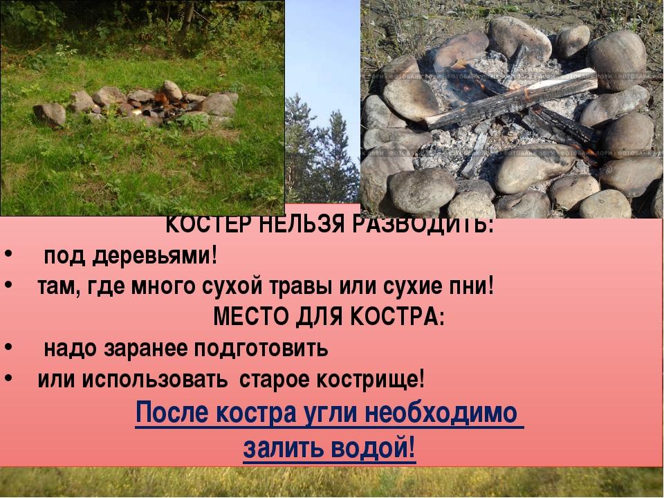 Как постараться не допустить пожара в лесу. При разведении костра в лесу необ...