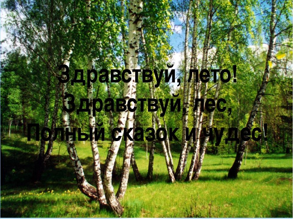 Здравствуй, лето! Здравствуй, лес, Полный сказок и чудес!