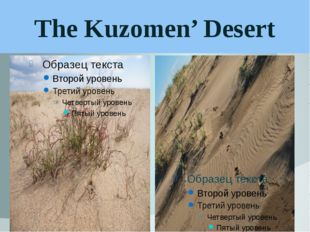 The Kuzomen' Desert