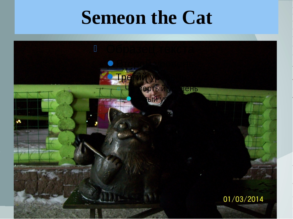 Semeon the Cat