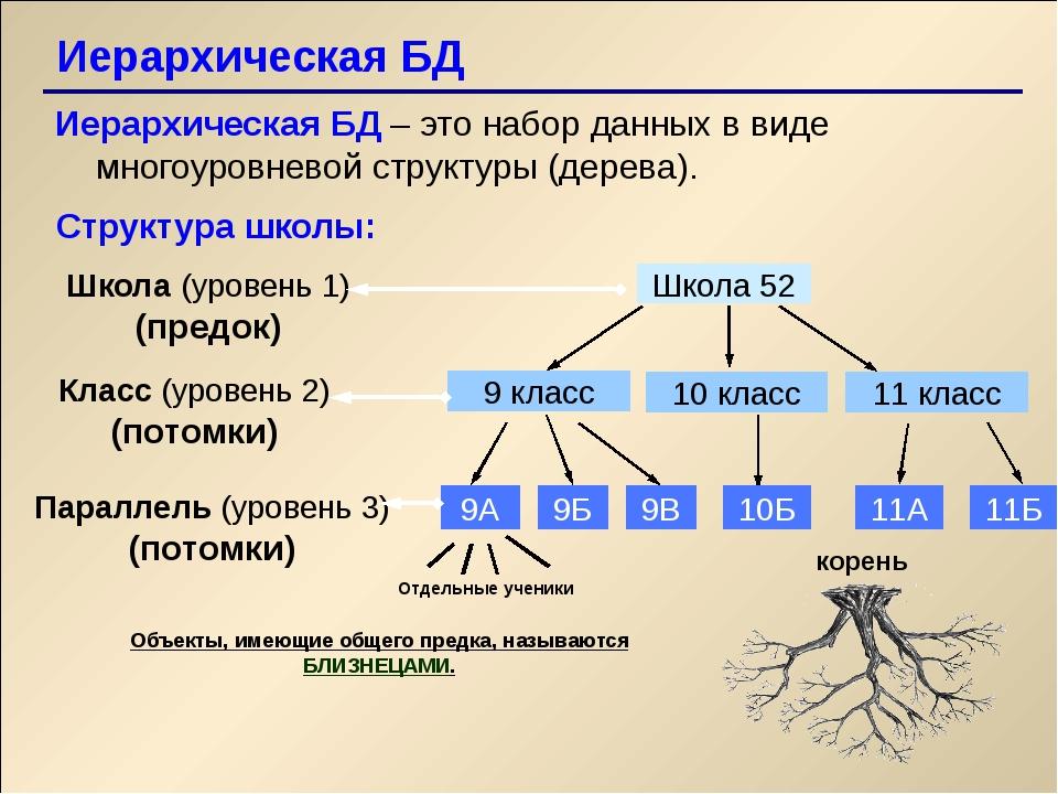 Иерархическая БД Иерархическая БД – это набор данных в виде многоуровневой с...