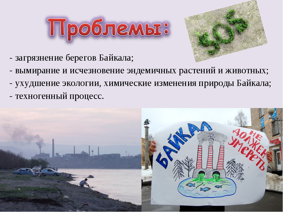 - загрязнение берегов Байкала; - вымирание и исчезновение эндемичных растений...