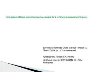 Выполнила: Молянова Ольга, ученица 4 класса «А» ГБОУ СОШ № 2 п.г.т.Усть-Кине