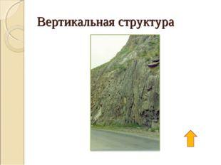 Вертикальная структура