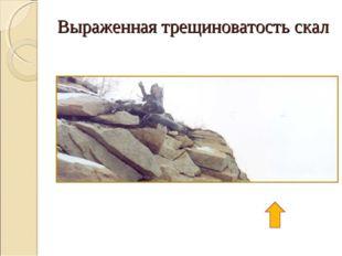 Выраженная трещиноватость скал