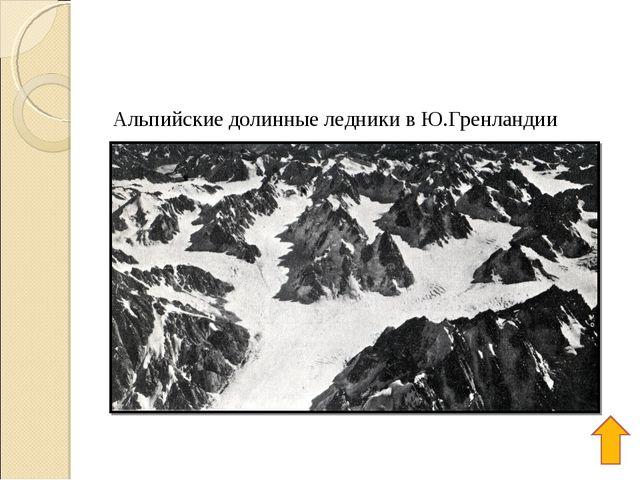 Альпийские долинные ледники в Ю.Гренландии