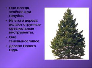 Оно всегда зелёное или голубое. Из этого дерева делают струнные музыкальные и