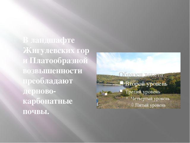В ландшафте Жигулевских гор и Платообразной возвышенности преобладают дернов...