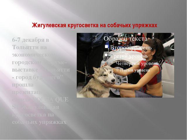 Жигулевская кругосветка на собачьих упряжках 6-7 декабря в Тольятти на эконом...
