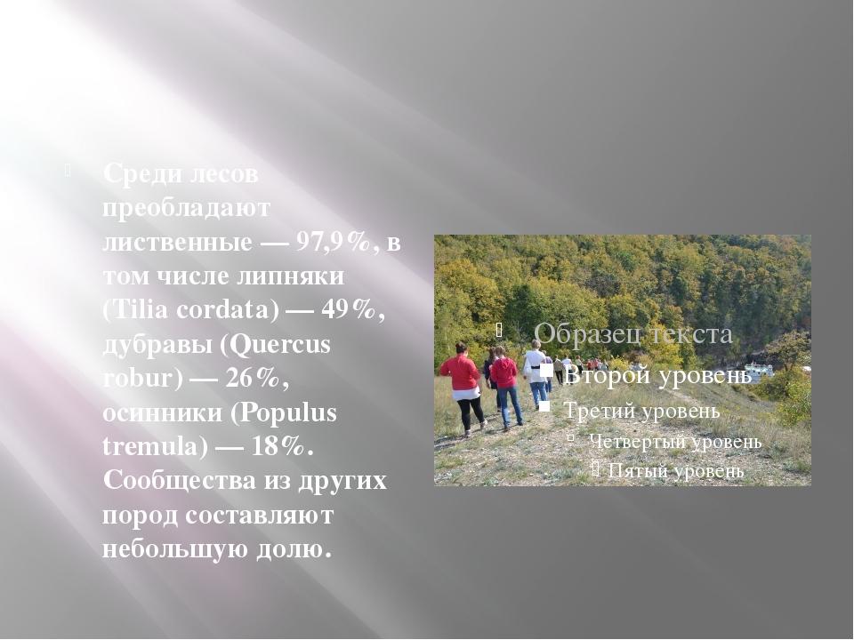 Среди лесов преобладают лиственные — 97,9%, в том числе липняки (Tilia corda...