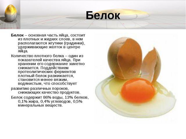 Белок Белок – основная часть яйца, состоит из плотных и жидких слоев, в нем р...