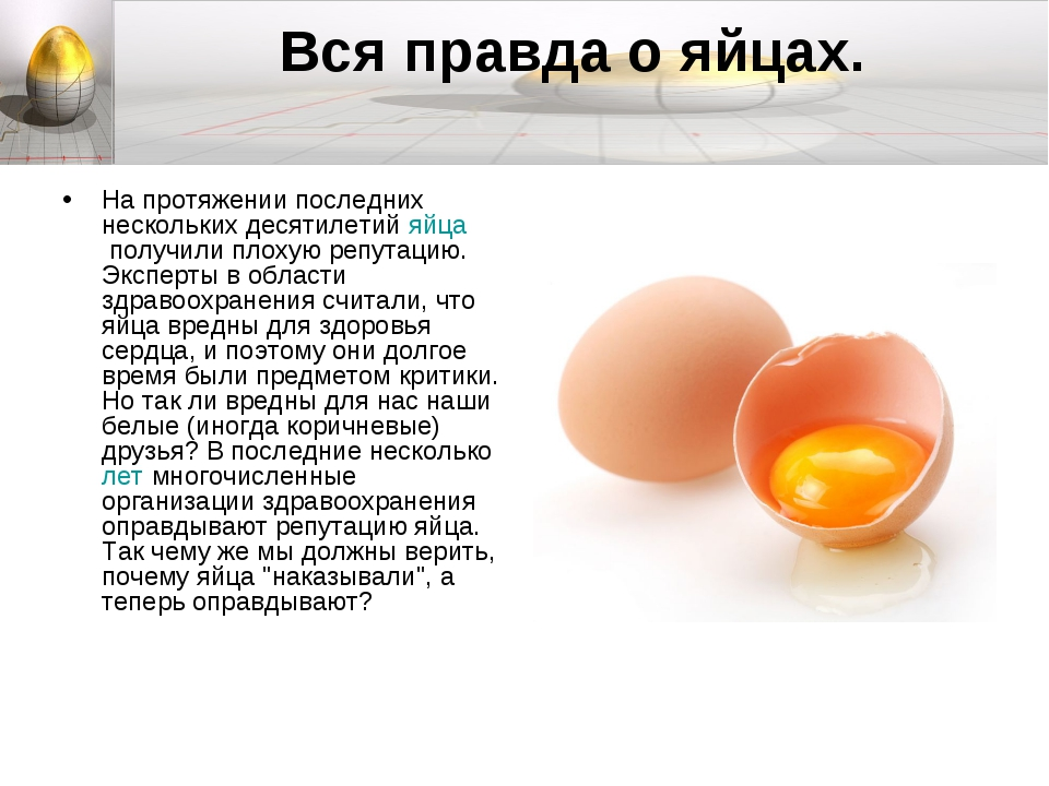 Вся правда о яйцах. На протяжении последних нескольких десятилетийяйцаполу...
