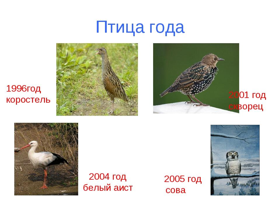 Птица года 1996год коростель 2001 год скворец 2004 год белый аист 2005 год сова