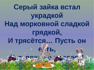 Серый зайка встал украдкой Над морковной сладкой грядкой, И трясётся… Пусть о