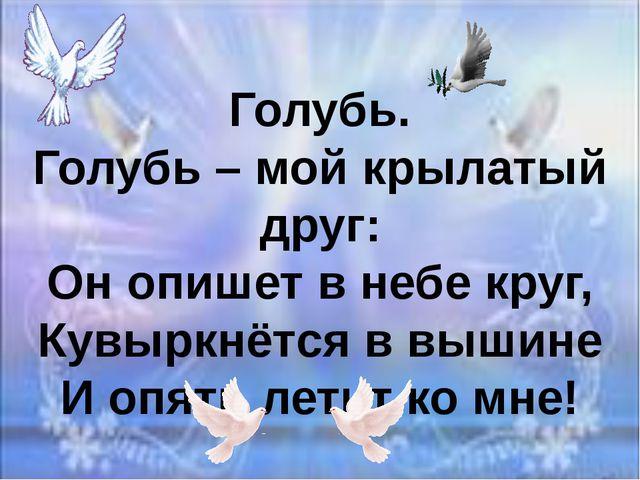 Голубь. Голубь – мой крылатый друг: Он опишет в небе круг, Кувыркнётся в выши...