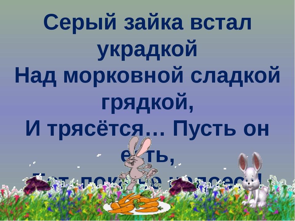 Серый зайка встал украдкой Над морковной сладкой грядкой, И трясётся… Пусть о...