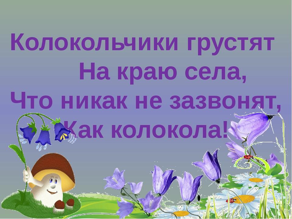 Колокольчики грустят На краю села, Что никак не зазвонят, Как колокола!