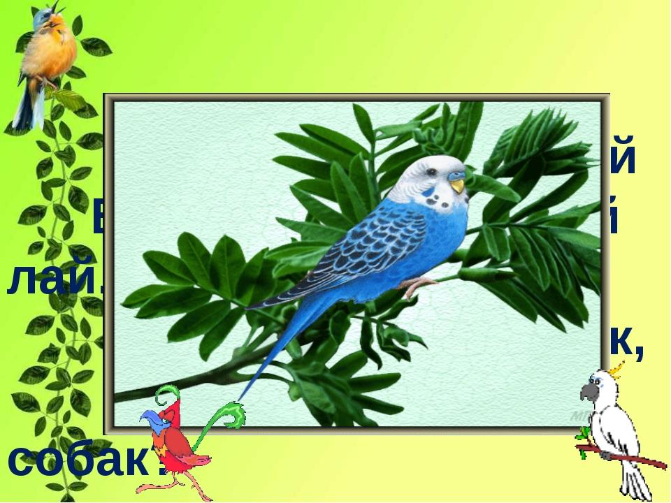 Говорящий попугай Вдруг издал собачий лай. Как он научился так, Если в доме...
