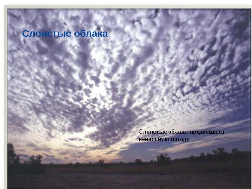 Слоистые облака Слоистые облака предвещают ненастную погоду