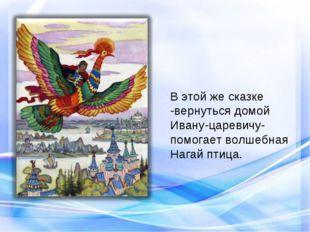 В этой же сказке -вернуться домой Ивану-царевичу- помогает волшебная Нагай пт