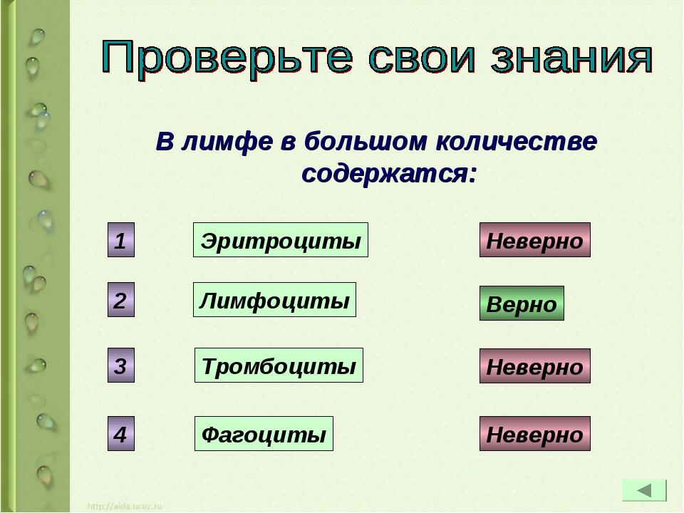 В лимфе в большом количестве содержатся: Эритроциты Лимфоциты Тромбоциты Фаго...