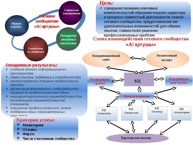 Руководящая группа Цель: совершенствование ключевых компетентностей образоват...