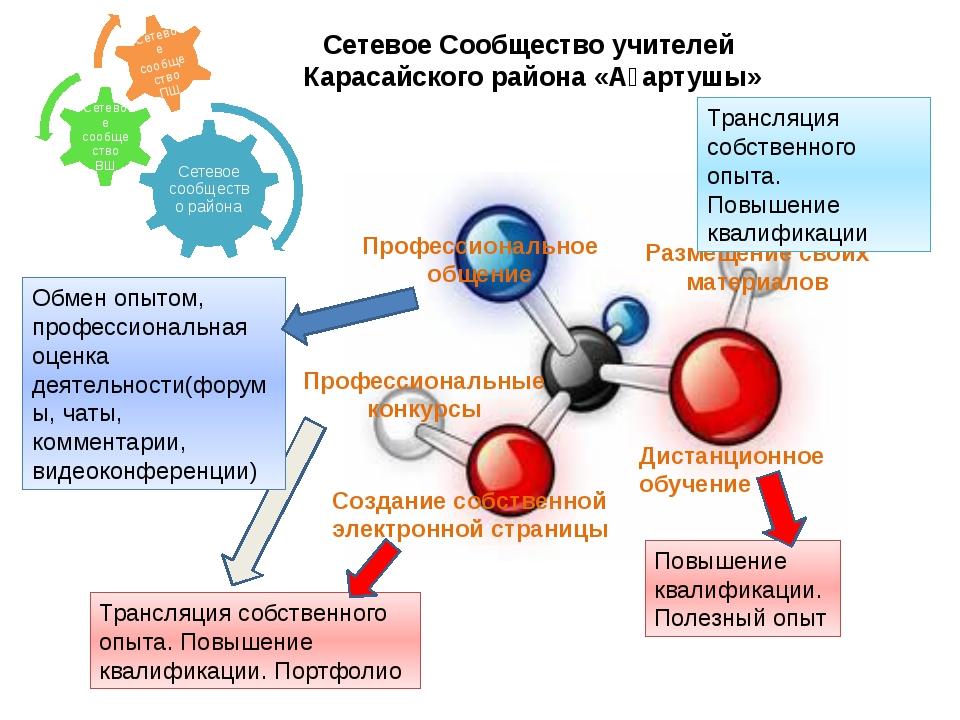 Сетевое Сообщество учителей Карасайского района «Ағартушы» Профессиональное о...