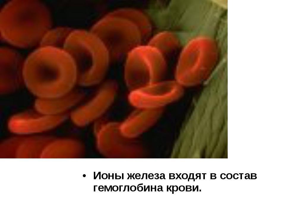 Ионы железа входят в состав гемоглобина крови.